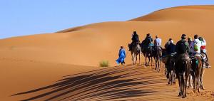 desert-merzouga